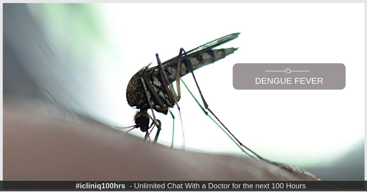 Dengue Fever - Causes, Symptoms, Treatment and Prevention