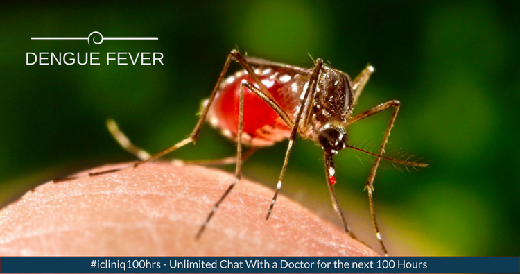 Dengue Fever? Do Not Panic!