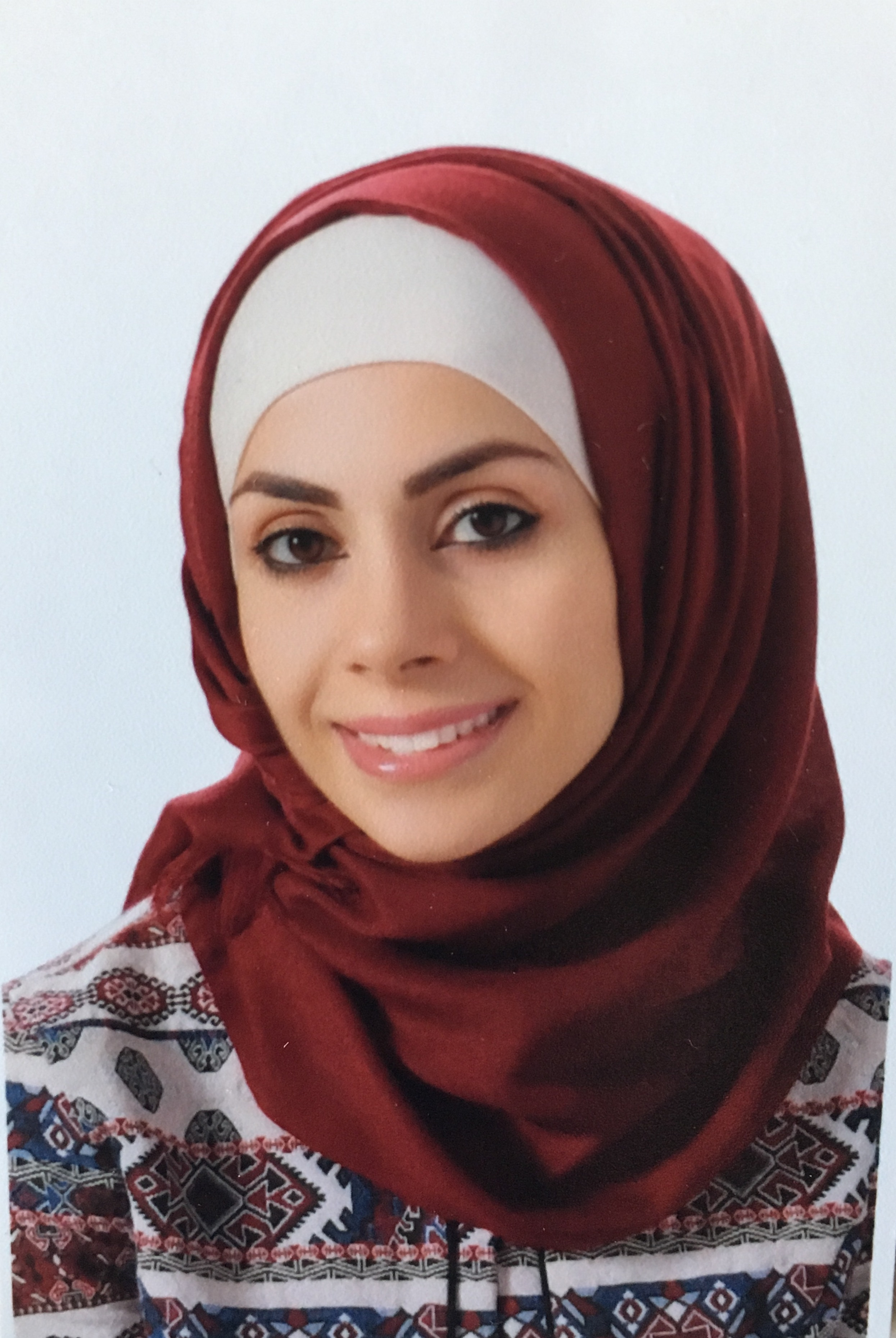 Dr. Alaa Mufid Mohammad