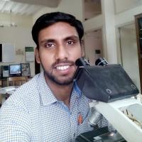Dr. Rakesh Kumar Bahunuthula
