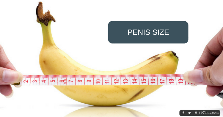 What S The Normal Penis Size
